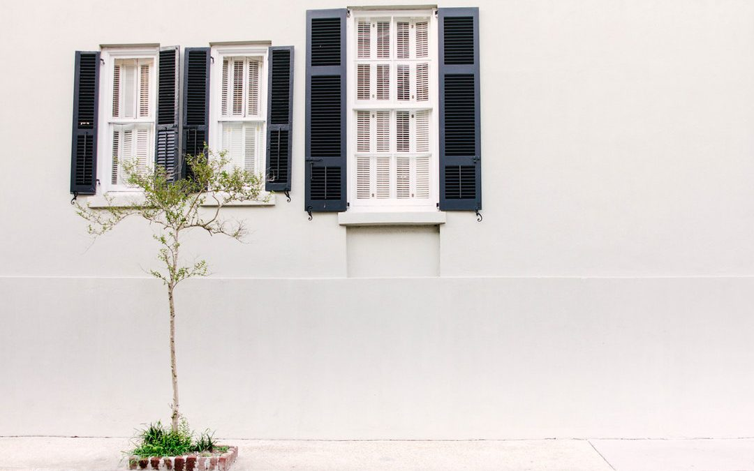 Shutters vs Blinds vs Shades: Which Window Treatment is Right for You?