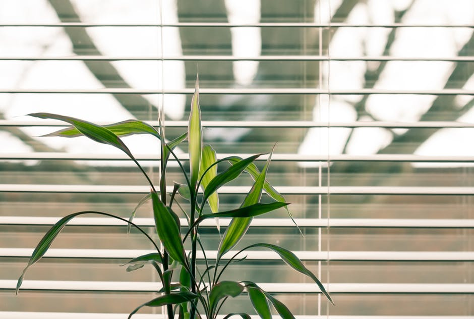 Ditch the String: 5 Benefits of Cordless Blinds